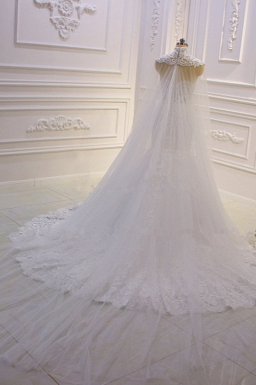BMbridal Stylish V-Neck Tulle Lace Wedding Dress Mermaid Appliques Beadings Bridal Gowns with Wraps_5