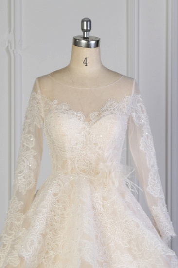 BMbridal Exquisite Lace Appliques Wedding Dress Tulle Long Sleeves Sequined Bridal Gown On Sale_5