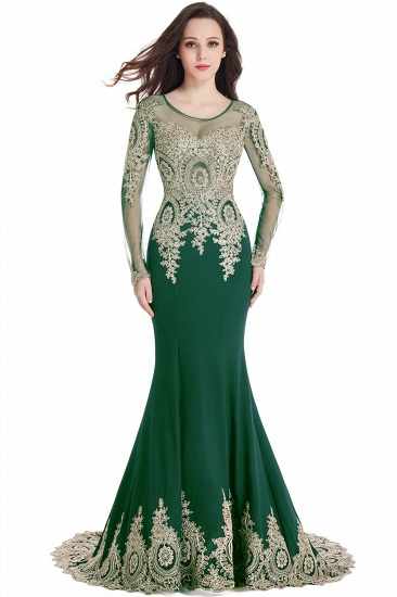 Gorgeous Long Sleeve Mermaid Evening Party Gowns With Lace Appliques_9
